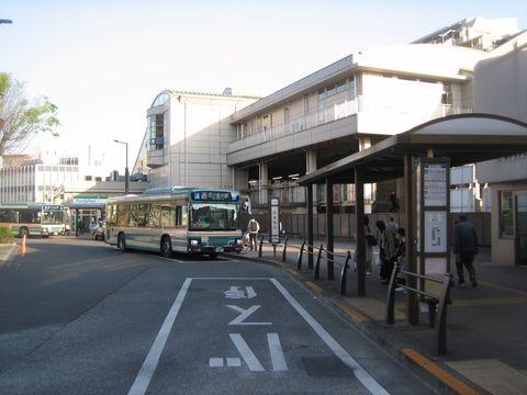 hanakoganei.JPG